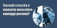 Memoria muscolare – steroidi e crescita – vantaggi perenni?